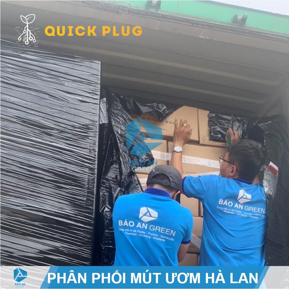 """Phân phối """"Mút Hữu cơ Ươm Keiki (Kie) Lan"""" chính hãng Quick Plug, Hà Lan"""