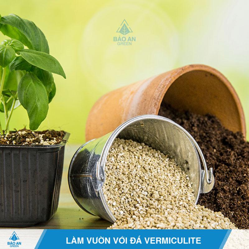 7 công dụng vượt trội của đá Vermiculite trong làm vườn