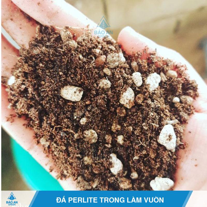 Ứng dụng đá trân châu Perlite trong làm vườn