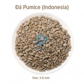Đá bọt Pumice - Indo