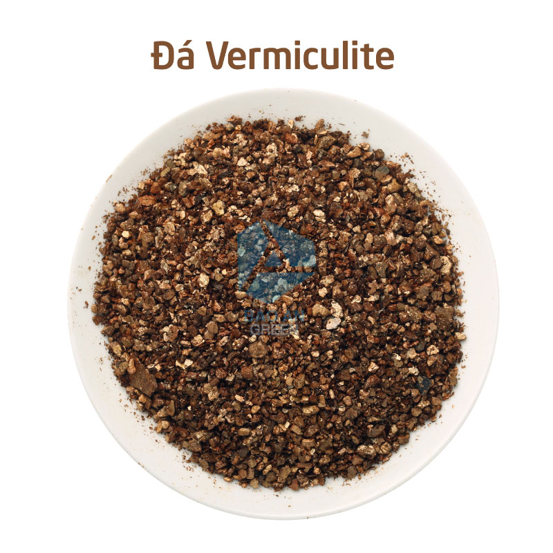 Đá khoáng Vermiculite